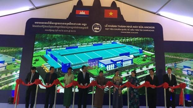 Inauguran planta de productos lacteos mixta entre grupos vietnamita y camboyano hinh anh 1