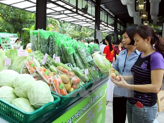 Siguen en alza exportaciones agroforestales y acuaticas de Vietnam hinh anh 1