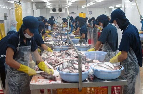 Vietnam saluda aprobacion por el Senado de EE.UU. de eliminar supervision a bagres hinh anh 1