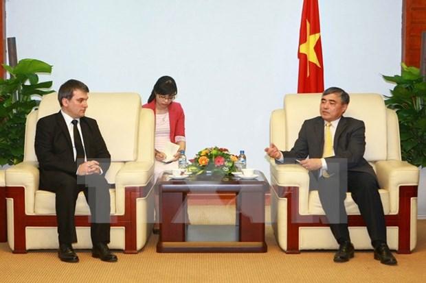 Vietnam y Turquia impulsan cooperacion en prensa hinh anh 1