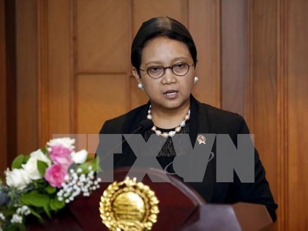 Indonesia reafirma apoyo al proceso de paz en Oriente Medio hinh anh 1