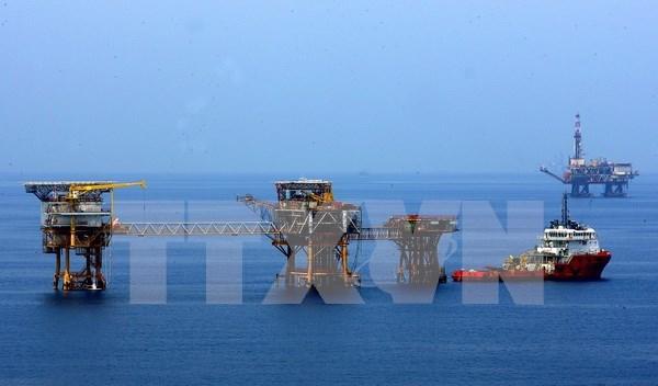 Vietnam aumenta importacion de productos petroleros de paises de ASEAN hinh anh 1