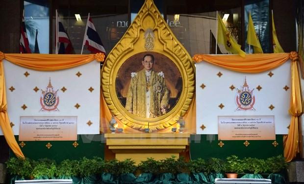 Conmemora Tailandia aniversario 70 de investidura del rey Bhumibol Adulyadej hinh anh 1