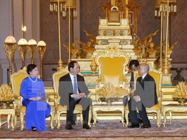 Presidente vietnamita dialoga en Phnom Penh con rey camboyano hinh anh 1