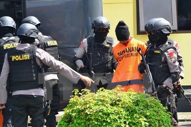Indonesia: Condenan a cuatro sujetos por conspiracion terrorista hinh anh 1