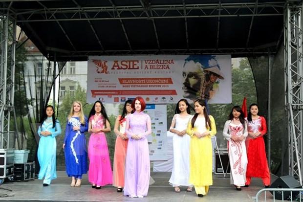 Impresionantes imagenes vietnamitas en festival de cultura asiatica hinh anh 1