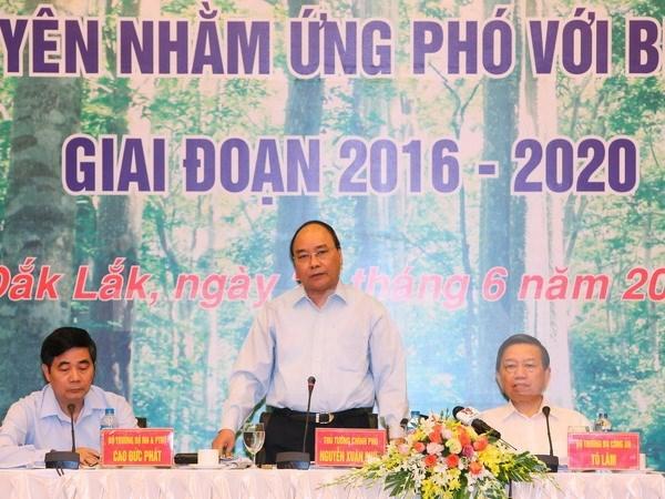 Premier urge medidas para recuperacion sostenible de bosques en Tay Nguyen hinh anh 1