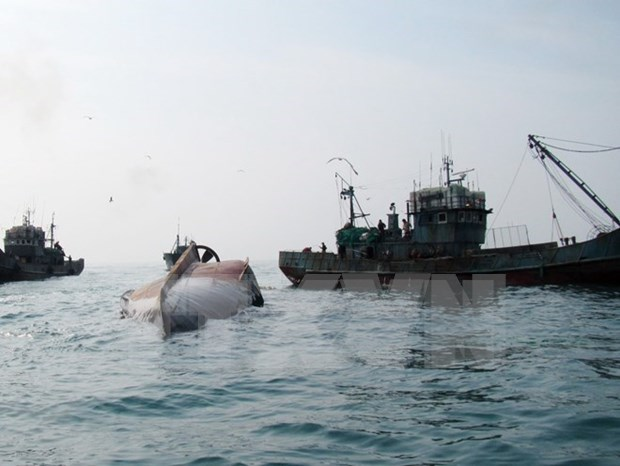 Indonesia hundira a pesqueros extranjeros que faenan ilegalmente en sus mares hinh anh 1