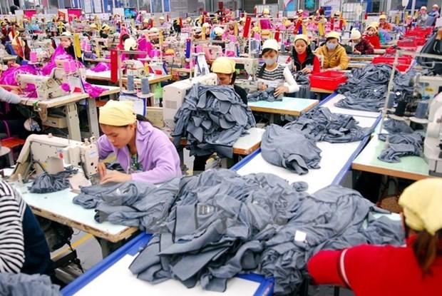 Mas de 600 mil trabajadores vietnamitas encuentran empleos en cinco meses hinh anh 1
