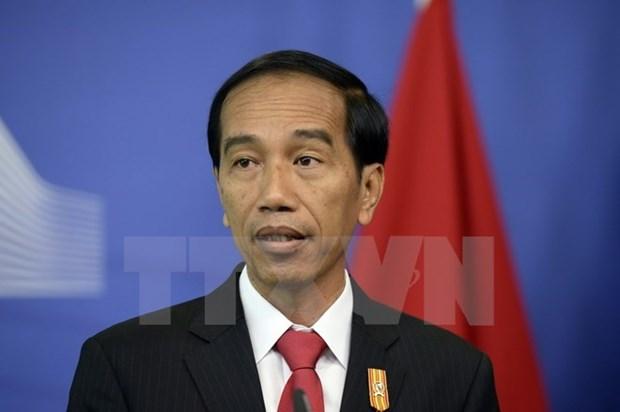 Indonesia prioriza desarrollo economico de islas Natuna hinh anh 1