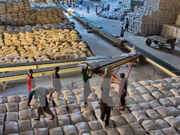 Pronostican en Vietnam exportacion de arroz este ano similar a 2015 hinh anh 1