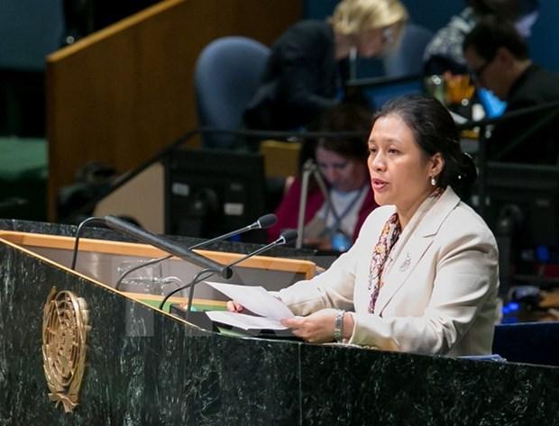 Vietnam resalta el asunto del Mar del Este en reunion de estados miembros de UNCLOS hinh anh 1
