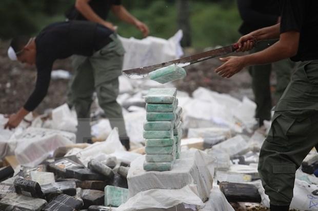Camboya y Myanmar destruyen gran cantidad de drogas hinh anh 1