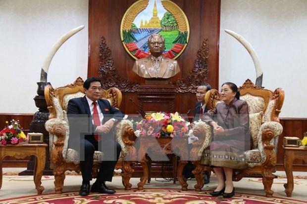Vietnam y Laos refuerzan colaboracion en asuntos etnicos hinh anh 1