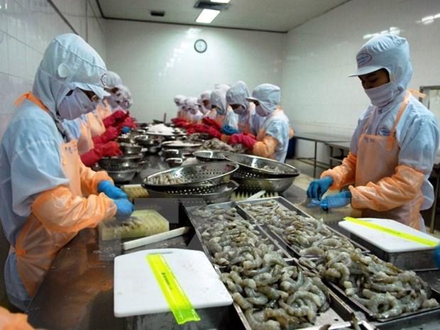 Oportunidades para productos agricolas vietnamitas con TLC hinh anh 1