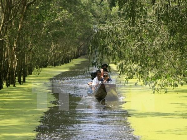 Vietnam trabaja por proteger Parque Nacional de Tram Chim hinh anh 1