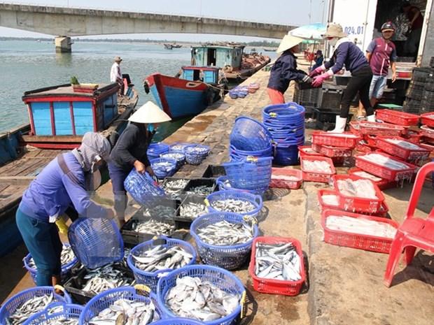 Exporta Vietnam gran volumen de productos agroforestales y acuaticos hinh anh 1