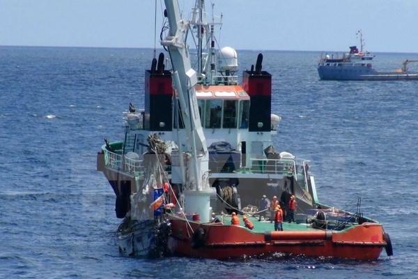 Recuperan restos de ocho de los nueve tripulantes de avion CASA 212 hinh anh 1