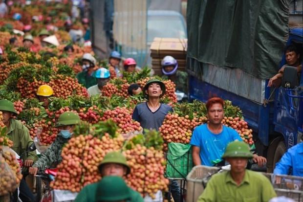 Divulgan compromisos de proteccion de indicaciones geograficas entre Vietnam y UE hinh anh 1