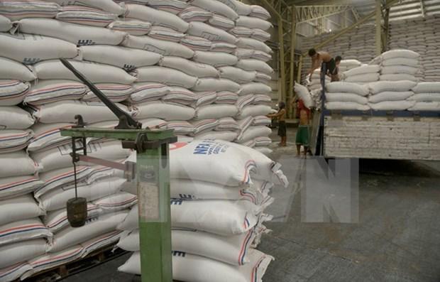 Laos iniciara construccion de almacenes de arroz en todo el pais hinh anh 1