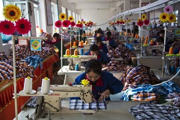 Economia de Camboya crecera siete por ciento este ano hinh anh 1