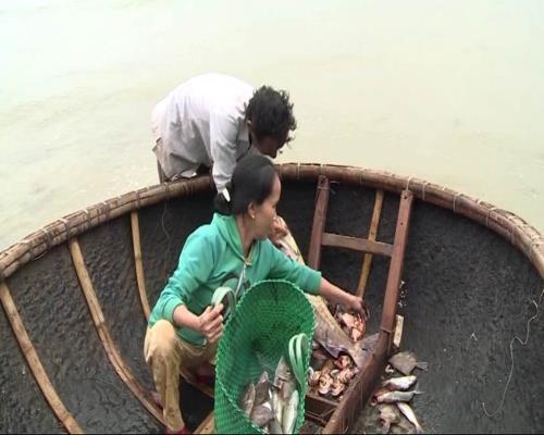 Respalda Thua Thien- Hue a pescadores en estabilizacion de vida hinh anh 1