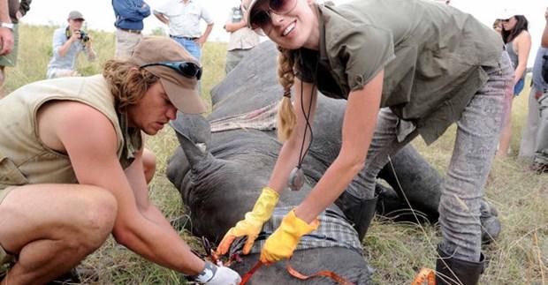 Ogilvy Vietnam obtiene premios por campana de conservacion de rinocerontes hinh anh 1
