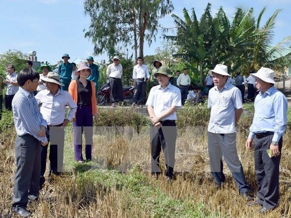 Proyecto gubernamental beneficia a familias pobres en Vietnam hinh anh 1