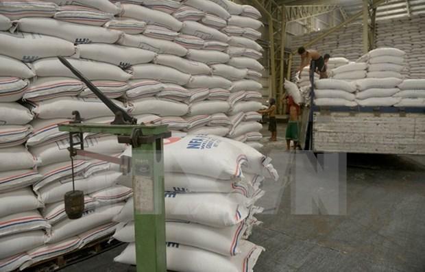 Camboya registra reduccion en exportacion de arroz hinh anh 1