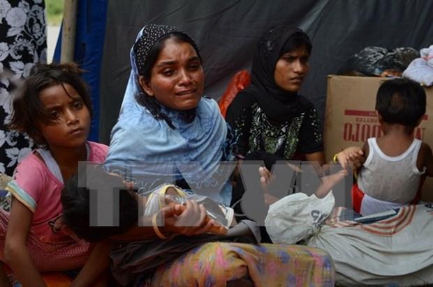 Myanmar y ACNUR acordaron plan de repatriacion de inmigrantes en Tailandia hinh anh 1