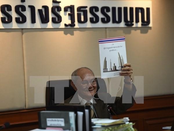 Tailandia: denuncian distorsion de proyecto de constitucion hinh anh 1