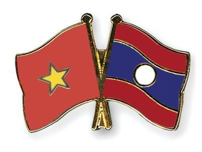 Jovenes vietnamitas realizan trabajos voluntarios en Laos hinh anh 1