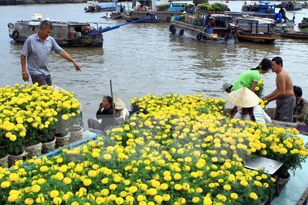 Seminario busca medidas para el desarrollo turistico del Delta de Mekong hinh anh 1