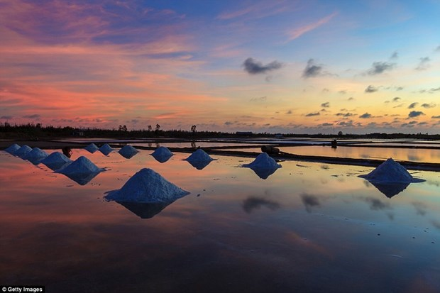 Salinas vietnamitas figuran entre los mejores lugares para crepusculo hinh anh 1
