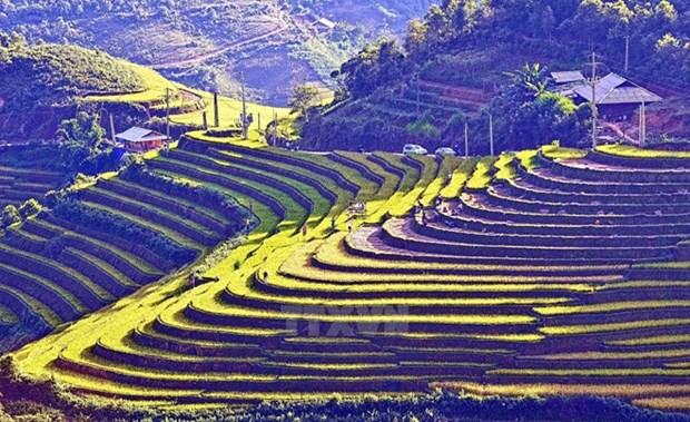 Ano Nacional de Turismo de Vietnam se celebrara en provincia de Lao Cai hinh anh 1