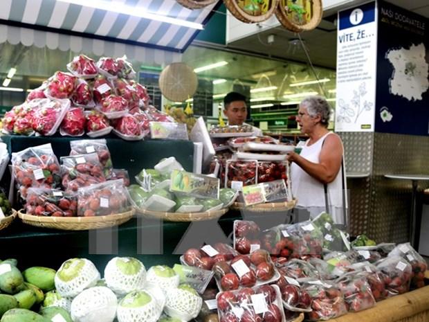 Promueven frutas vietnamitas en Republica Checa hinh anh 1