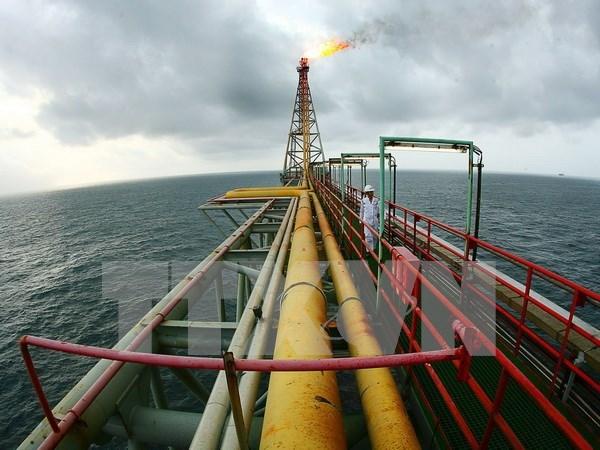 Grupo petrolero de Vietnam se esfuerza por aumentar su produccion anual hinh anh 1