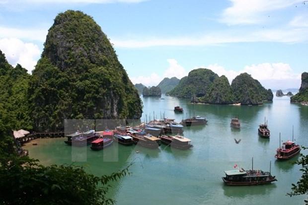Jovenes vietnamitas residentes en ultramar exploran Bahia de Ha Long hinh anh 1