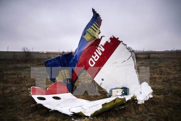 Malasia se compromete a averiguar explicacion para la tragedia MH17 hinh anh 1