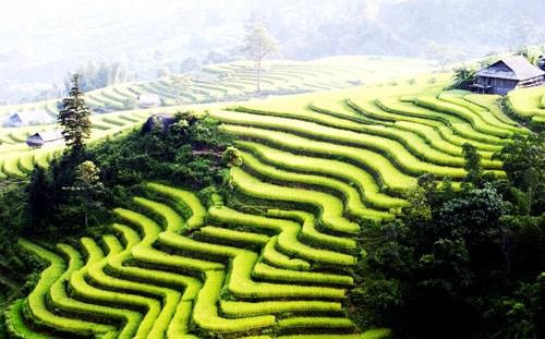 Lao Cai despierta a su gran potencial turistico hinh anh 1