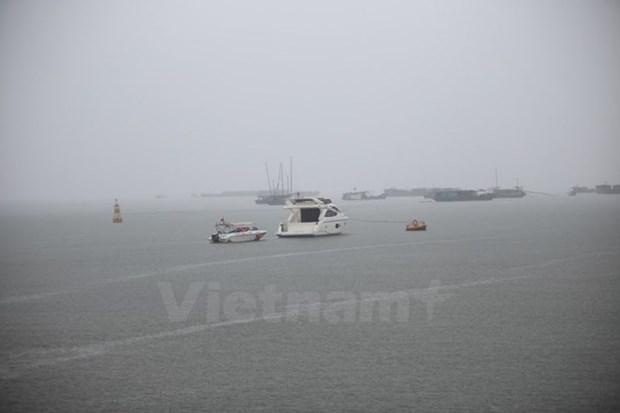 Desarrolla provincia vietnamita astilleros para la pesca en alta mar hinh anh 1
