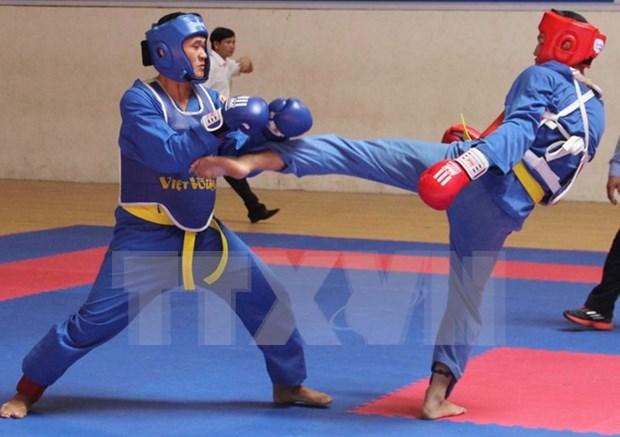 Arte marcial vietnamita Vovinam ausente en SEA Games 29 hinh anh 1