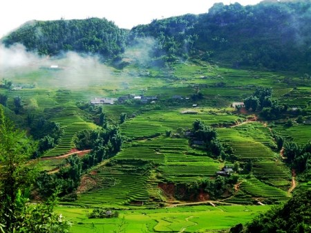 Provincia de Vietnam explota potencialidades turisticas hinh anh 1