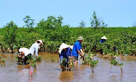 Estados Unidos sigue asistencia para programas humanitarios en Vietnam hinh anh 1