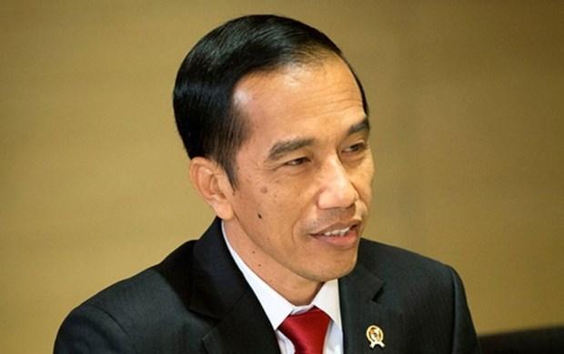 Presidente indonesio reestructura su gabinete para impulsar economia hinh anh 1