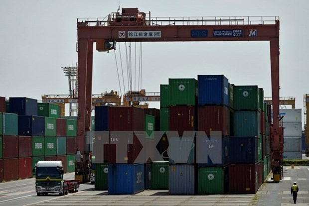 Aumenta volumen de mercancias transportadas por puertos maritimos de Vietnam hinh anh 1