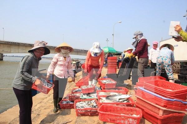 Vietnam e Indonesia impulsan cooperacion en el sector pesquero hinh anh 1
