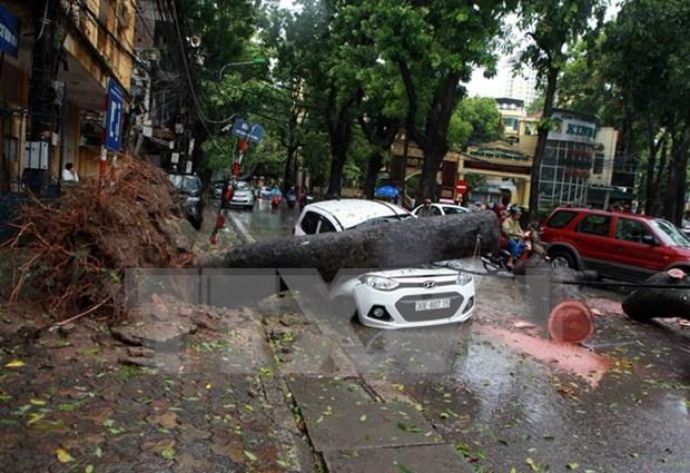 Primer ministro de Vietnam indico medidas urgentes por tifon Mirinae hinh anh 1