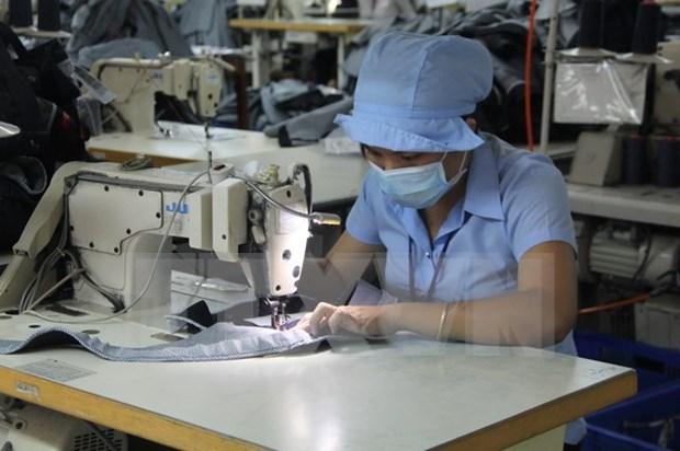 Aumentan en Vietnam cantidad de empresas que vuelven a funcionar hinh anh 1