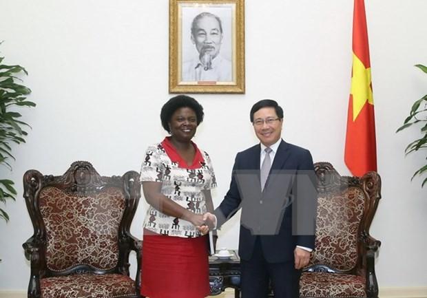 Dirigente de BM expresa voluntad de ayuda a Vietnam hinh anh 1